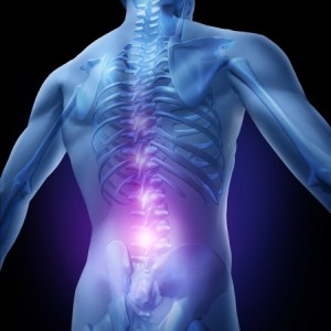 Spine and low back pain